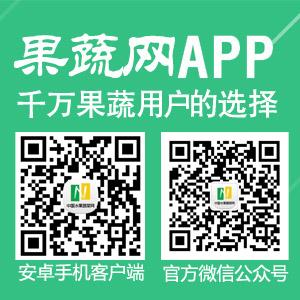 中国水果蔬菜网APP